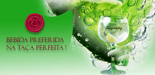 Gin Tonica Tanqueray