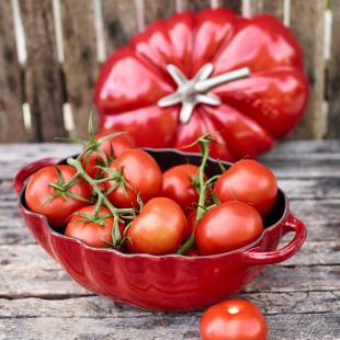 Cocote De Cerâmica Tomate Staub