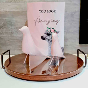 Pássaro Decorativo Rosa De Resina Limoeiro