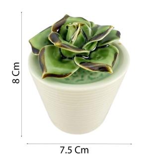 Suculenta Decorativa Echeveria Fabiola Porcelana M
