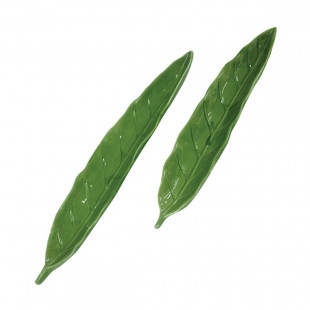 Conjunto de Pratos de Cerâmica Folhas
